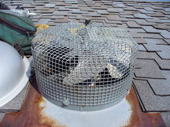 Attic Fan Screens Sold And Installed By Animal Control