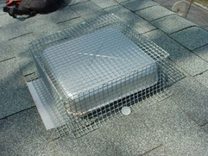 Roof Vent Screen Installation Animal Control Specialists