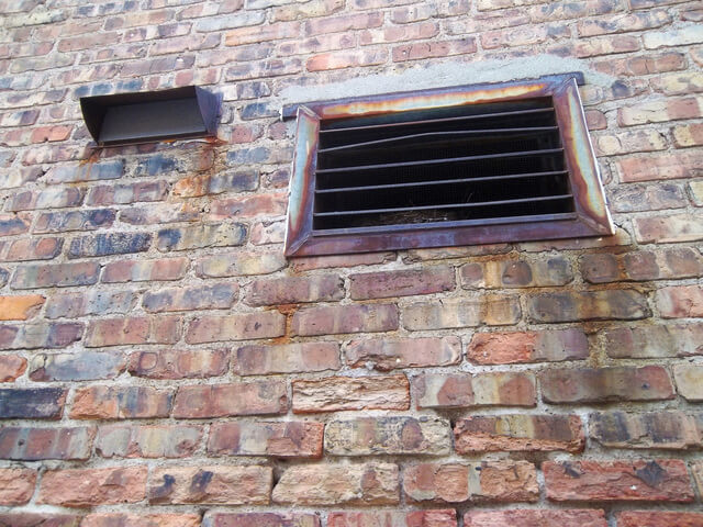 bird nest in vent